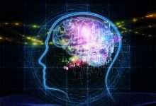 صورة علماء يطورون طريقة لربط الدماغ البشري مع الذكاء الاصطناعي تعرف عليها
