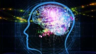 علماء يطورون طريقة لربط الدماغ البشري مع الذكاء الاصطناعي تعرف عليها
