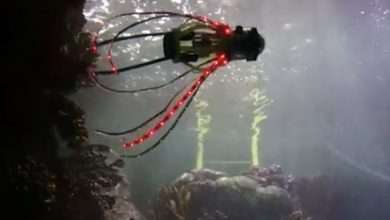 علماء يطورون روبوت مائي يشبه الحبار - فيديو
